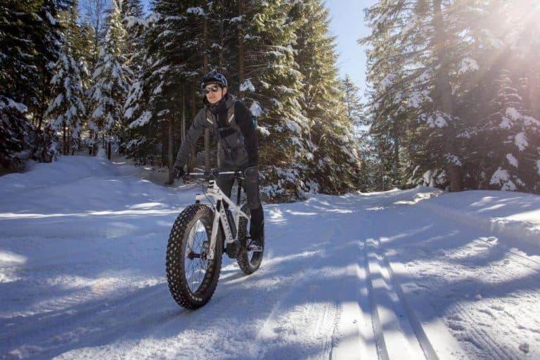 Trentino Le Fat Bike